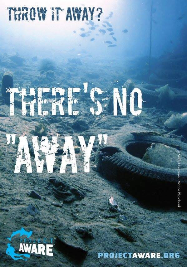 don't rubbish the oceans