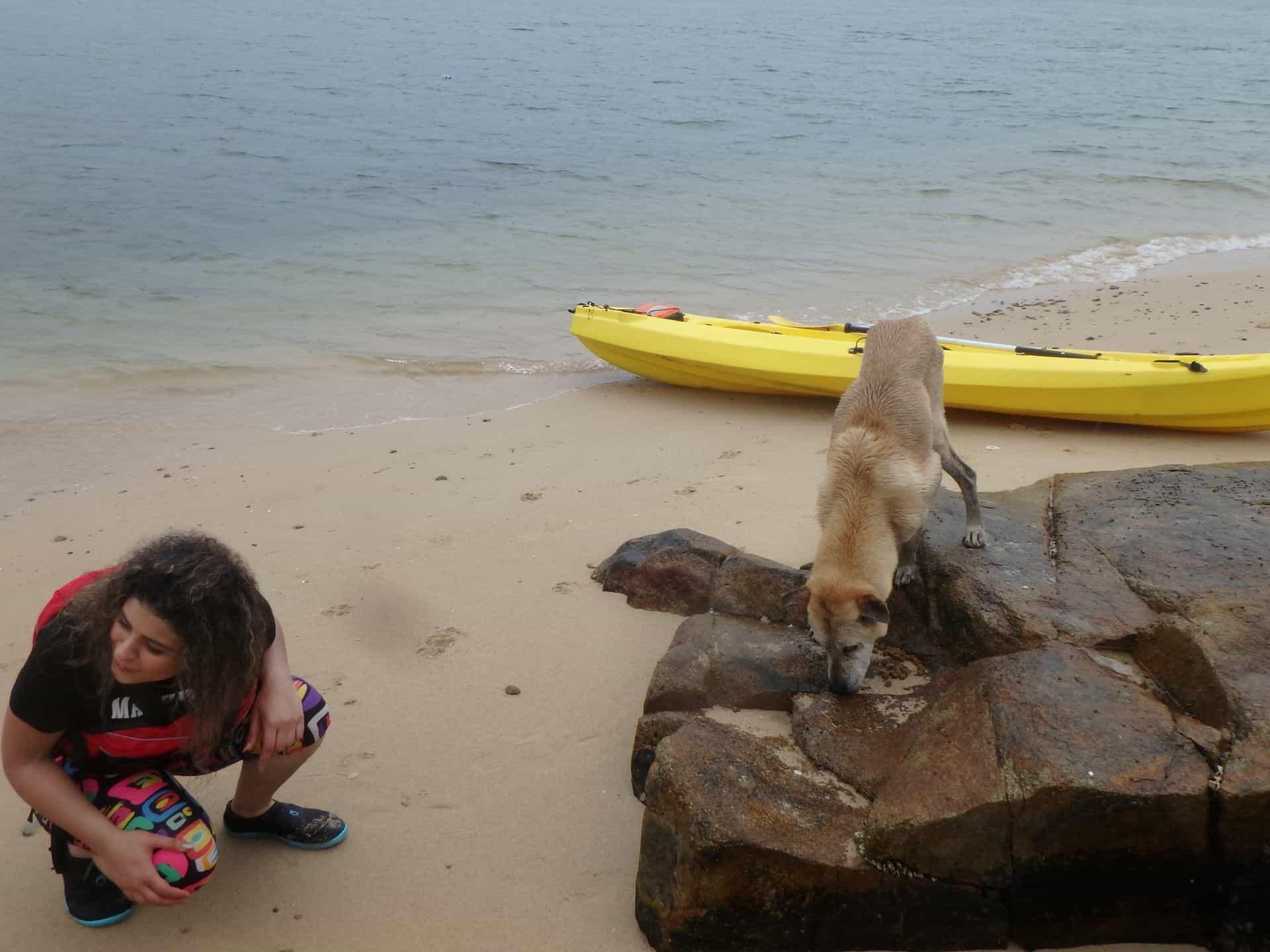 Dog Island residents