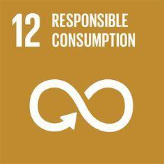 sustainability goal 12