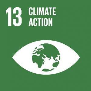 sustainability goal 13