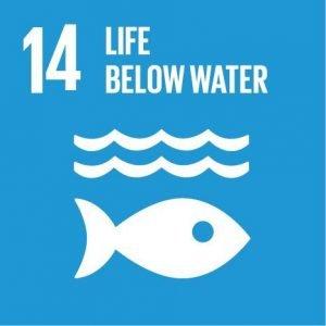 sustainability goal 14