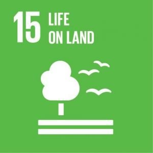 sustainability goal 15
