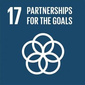 sustainability goal 17