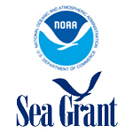 NOAA-square-logo