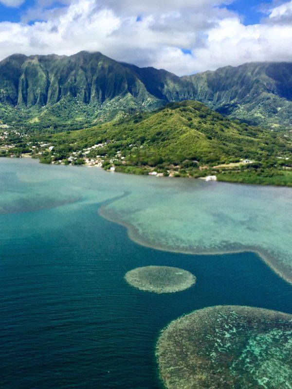 coral-reefs hawaii